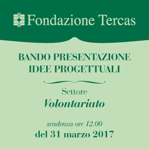 banner Volontariato 2017 300X300