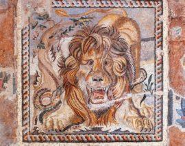 mosaico-leone-564×445