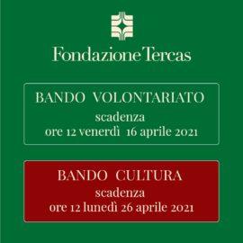 Bando Volontariato e Cultura quadrato-01